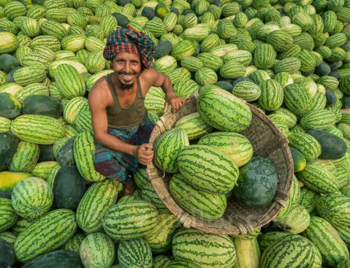 Unloading Watermelons